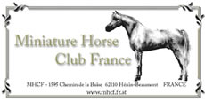 Miniature Horse Club France